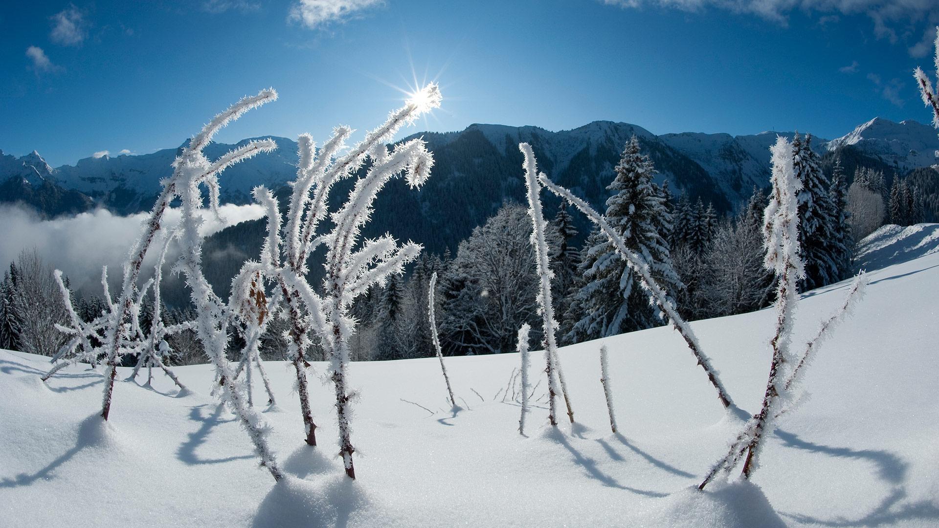 Actualités et événements hiver - CGH Résidences